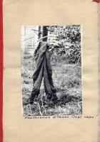 Kut-01-1975-15-30