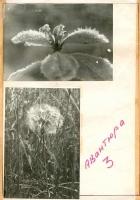 kut-09-1983-05-31