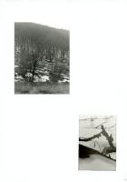 kut-21-1995-10-24